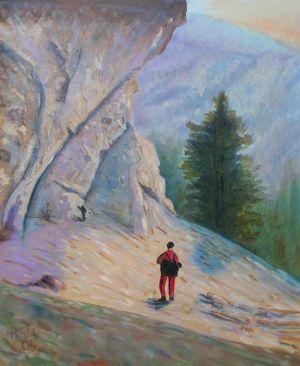 Climbing Mt. Le Cont